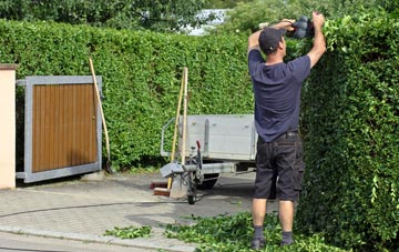 professional  hedge cutting services