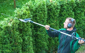 hedge trimming costs