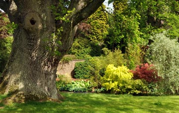 trusted tree surgeons sitemap