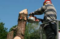 felling services